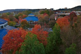 09 Fall in Coolidge Park