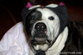 01 Tisen in his new hat