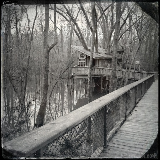 While not perfect, the railing running diagonally and the nearly straight treehouse come closer