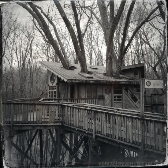 The treehouse at the end of the boardwalk