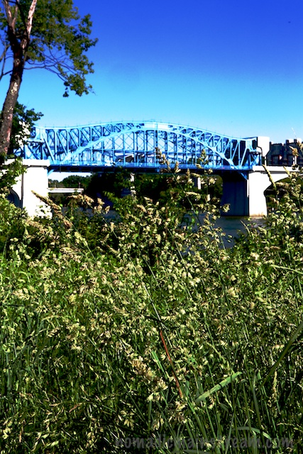Market St Bridge with grass foreground in Renaissance Park