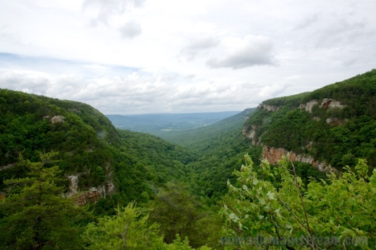 Looking out of the canyon and into lookout valley