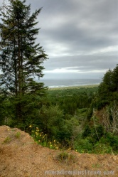 Overlook not far from the Pacific