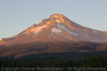 06 Mt Hood tight after sunset