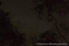 About what the sky looked like to the naked eye at our campsite in Cherokee National Forest